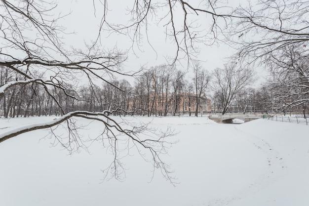 Malerische winterlandschaft des schneebedeckten parks im zentrum von sankt petersburg, russland.