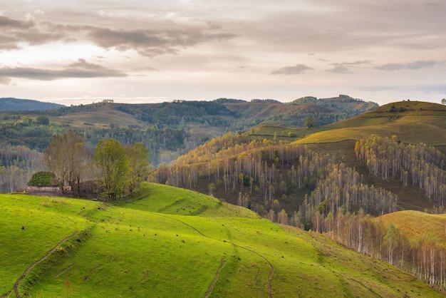 Malerischer blick auf die apuseni-berge bei bewölktem himmel in dumesti rumänien