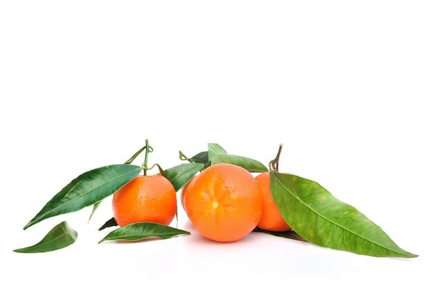 Mandarinen mit blatt