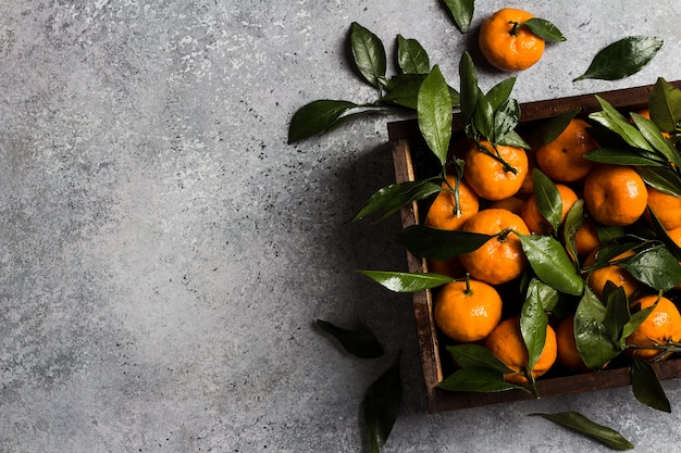 Mandarinen mit grünen blättern in holzkiste auf licht