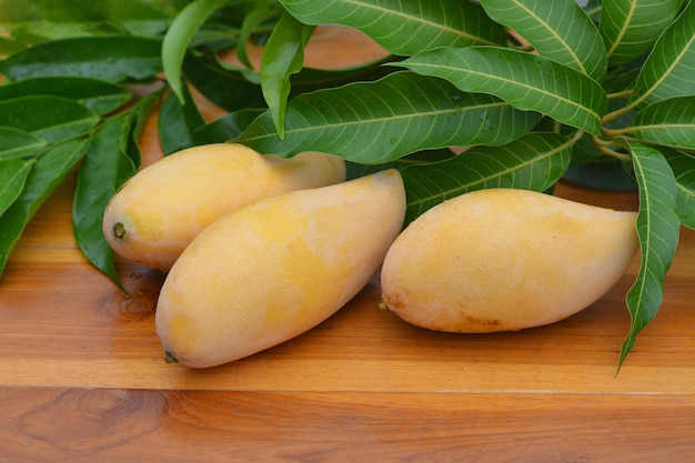 Mango auf bewaldetem brett mit grünen blättern.