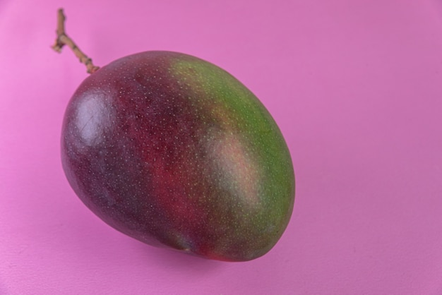 Mango auf der rosa oberfläche