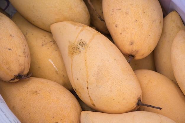 Mango ist überall in thailand. mangos auf dem markt.