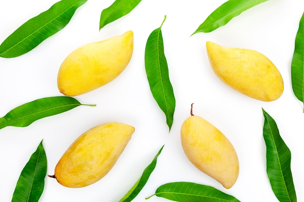 Mango mit blättern auf einem weißen hintergrund