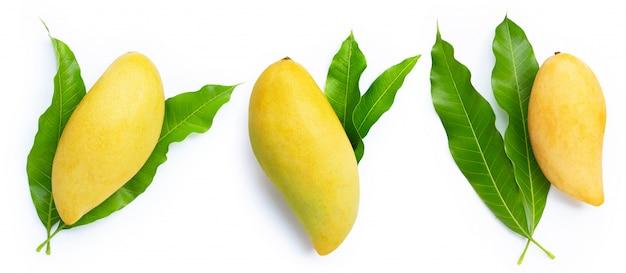 Mango mit blättern auf weißem hintergrund.