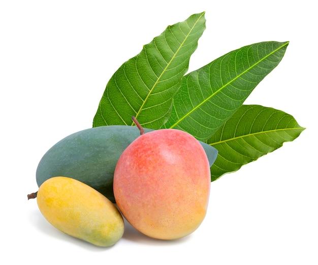 Mangofrucht mit blättern lokalisiert auf weißem hintergrund mit schnittpfad.