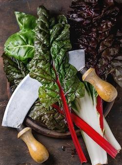 Mangold mangold salat blätter