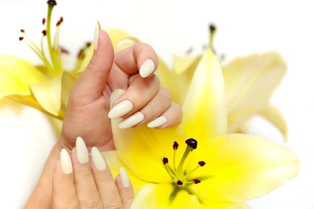 Maniküre an langen ovalen nägeln mit gelben lilien auf weißem grund.