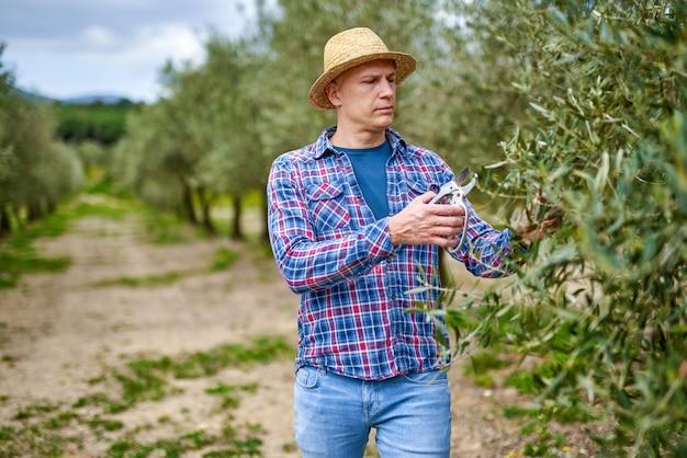 Mann bauer mit strohhut an olivenplantage.