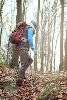 Mann beim wandern im herbstwald