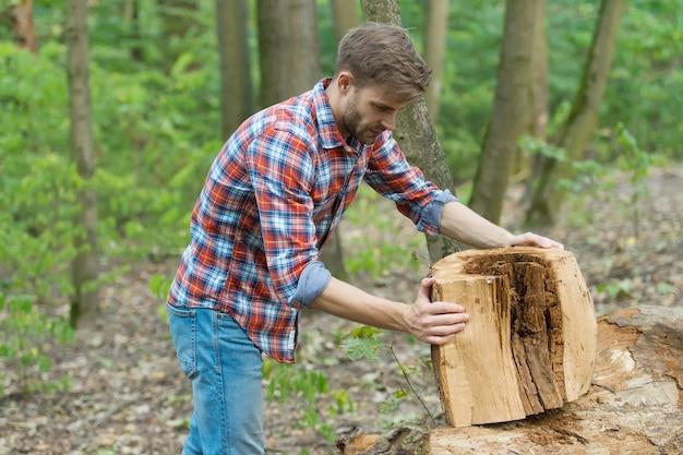Mann bereitet baumstumpf zum schneiden vor, waldnatur.