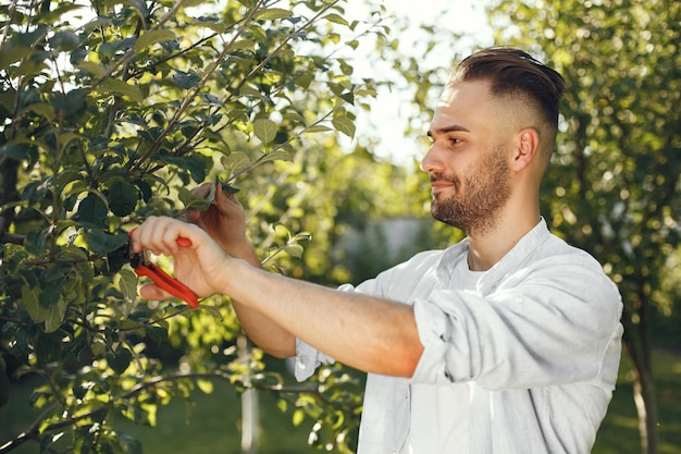 Mann, der ast der bürste schneidet. guy arbeitet in einem hinterhof.