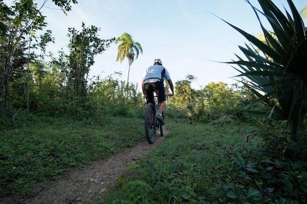 Mann, der auf mountainbike in tropischer natur, rückansicht radelt.