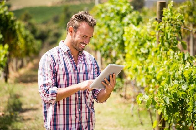 Mann, der digitale tablette am weinberg verwendet
