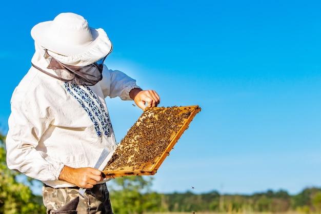 Mann, der eine bienenwabe mit bienen hält imker, der am sommertag wabenrahmen im bienenhaus inspiziert und untersucht. mann, der im bienenhaus arbeitet. imkerei. imkerei-konzept. bienen im bienenstock