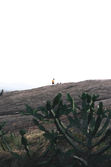 Mann, der einen berg in sri lanka wandert