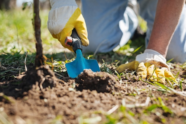 Mann, der gelbe gummihandschuhe trägt, die seinen familiengarten verbessern, kaufen oben, den boden mit einem kompost zu behandeln