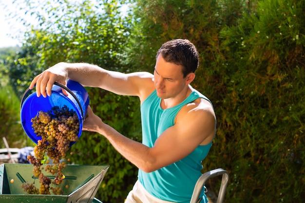 Mann, der mit traubenerntemaschine arbeitet