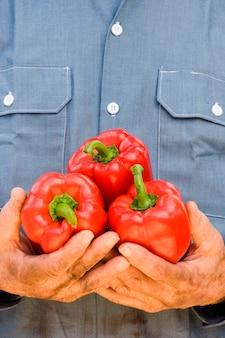 Mann, der roten grünen pfeffer, nahaufnahme hält