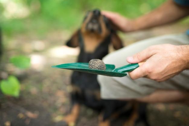 Mann, der seinem ausgebildeten hund dafür dankt, dass er ihm hilft, trüffelpilz im wald zu finden