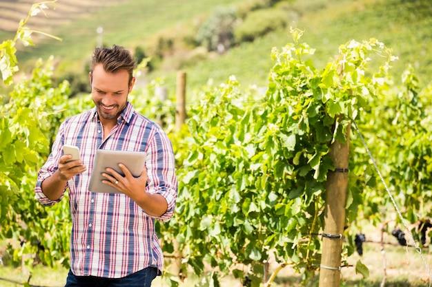 Mann, der tablette und telefon am weinberg am sonnigen tag verwendet