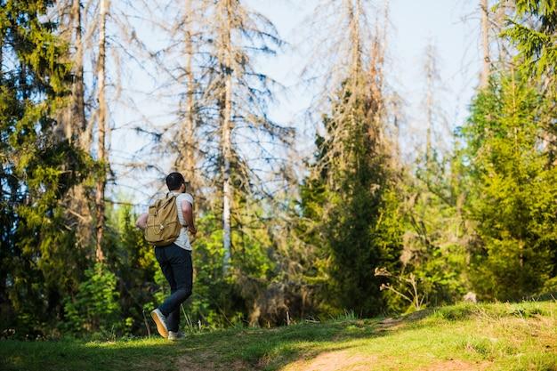 Mann, der wandern mit rucksack im freien in wäldern verwendet