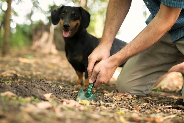Mann experte graben mit schaufel, um trüffel mit hilfe seines ausgebildeten hundes zu finden