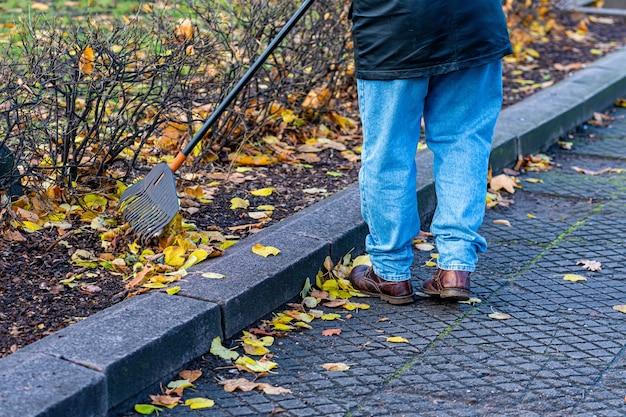 Mann im park entlang des bürgersteigs, der gefallene herbstblätter harkt, herbstreinigungsarbeiten