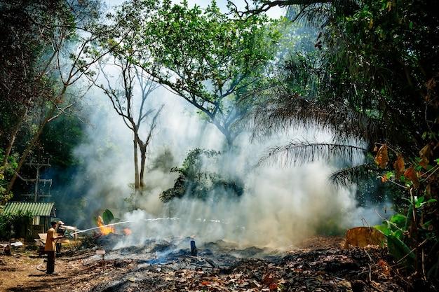 Mann in gazeverband feuerwehrschlauch versucht feuer zu löschen feuerrauch im dschungelfeuerwehrmann im regenwald