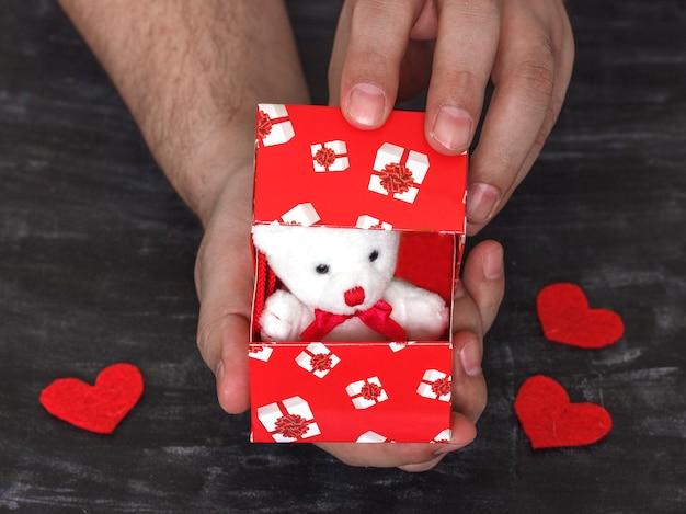 Mann macht einen vorschlag. teddybär in einem roten kasten mit herzen als geschenk