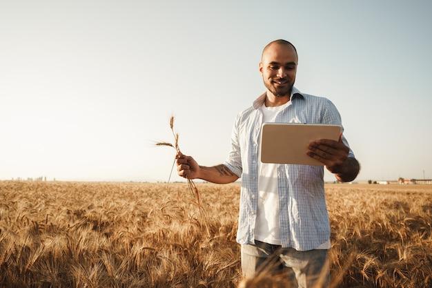 Mann mit digital-tablette im weizenfeld bei sonnenuntergang