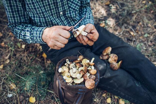 Mann säubert ölige pilze. herbstliche aktivität. herbstsaison