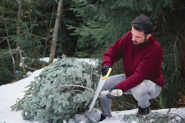 Mann schneidet den weihnachtsbaum