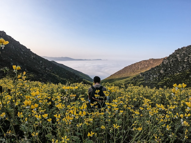 Mann sitzt auf blumenlandschaft eines bergigen tals
