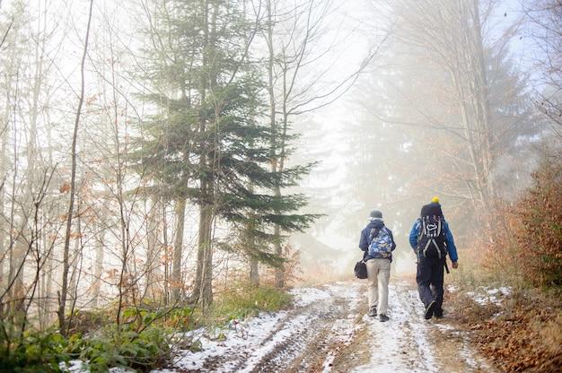 Mann- und frauenwanderer, die auf nebeligem waldgebirgspfad wandern