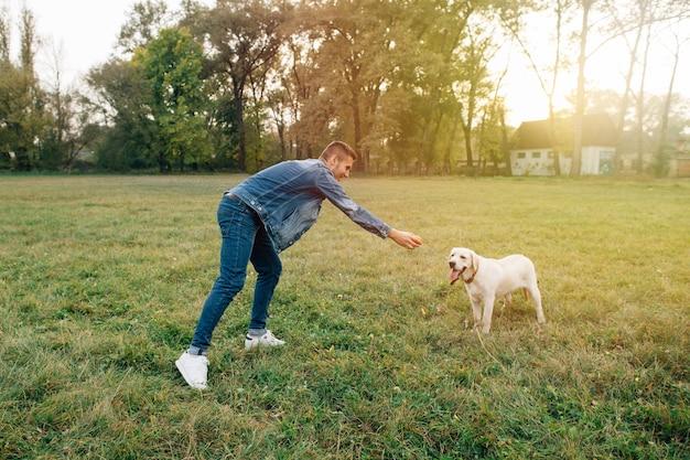 Mann und hund labrador haben spaß, im ball bei sonnenuntergang zu spielen