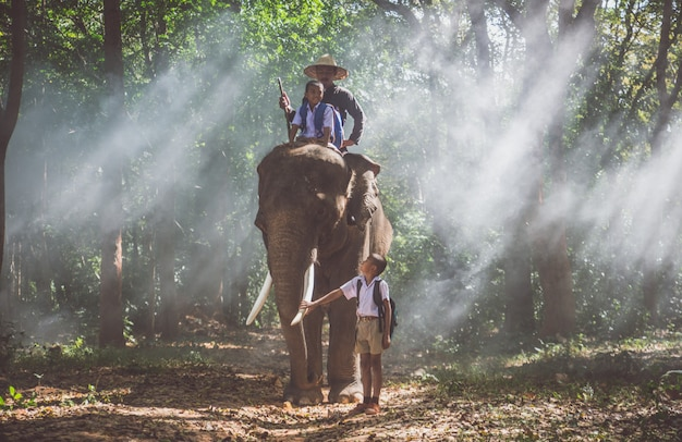 Mann und kinder gehen in den dschungel mit dem elefanten, lifestyle-momente aus nordthailand