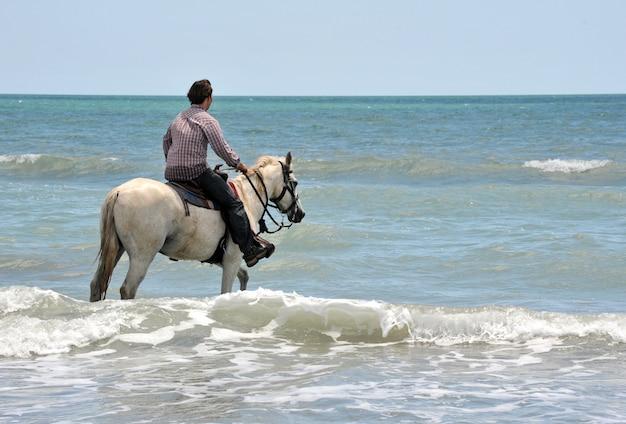 Mann und pferd im meer
