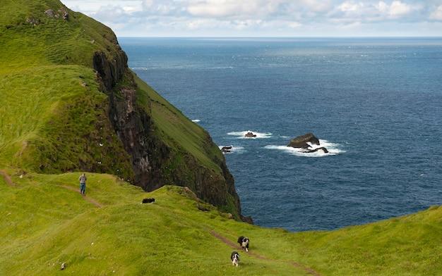 Mann und seine hunde wandern auf mykines, färöer-inseln