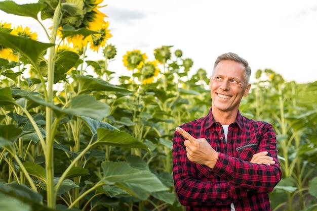 Mann zeigte auf eine sonnenblume