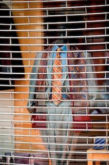 Mannequin hinter einem barrior in boston, massachusetts, usa