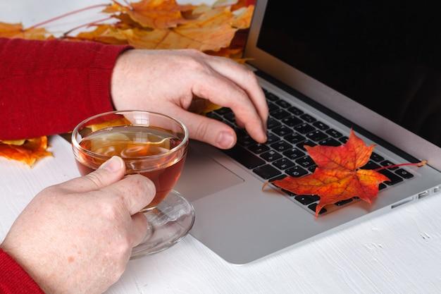 Mannhände, die laptop mit leerem bildschirm auf schreibtisch im hauptinnenraum verwenden.