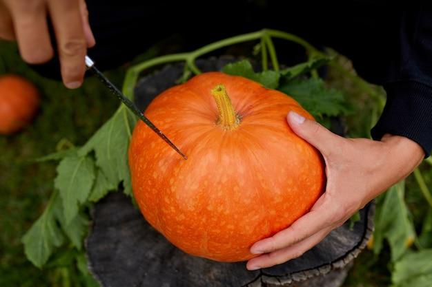 Mannhände schneiden kürbis, bevor sie für halloween schnitzen, bereitet jack o'lantern vor. dekoration für party, draufsicht, nahaufnahme, ansicht von oben, kopierraum