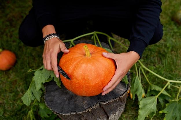 Mannhände schneiden kürbis, bevor sie für halloween schnitzen, bereitet jack o'lantern vor. dekoration für party, draufsicht, nahaufnahme,