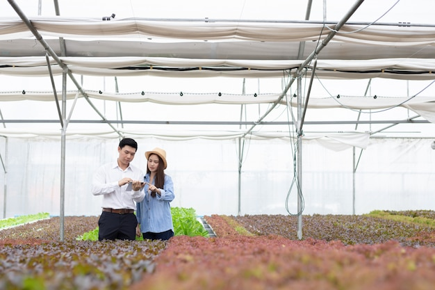 Manninspektoren inspizieren und protokollieren die qualität von bio-gemüse, wobei bäuerinnen als anleitung dienen.