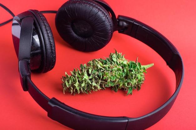 Marihuana knospe und kopfhörer, freizeit cannabis und rap musik.