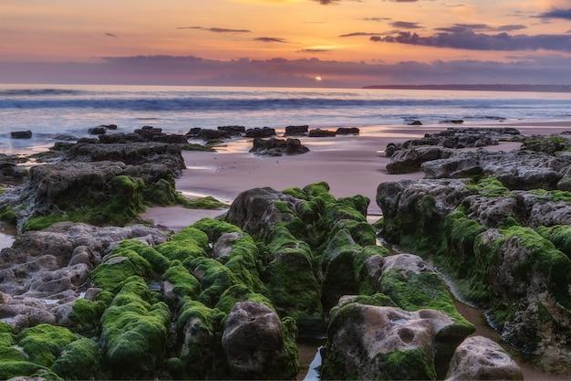 Marine magische landschaft vor sonnenuntergang. grünalgen auf den felsen. albufeira strand sturm.