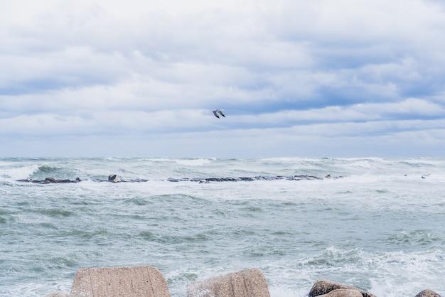 Maritimer spaziergang, der von den wellen eines seesturms und dem starken wind getroffen wird.