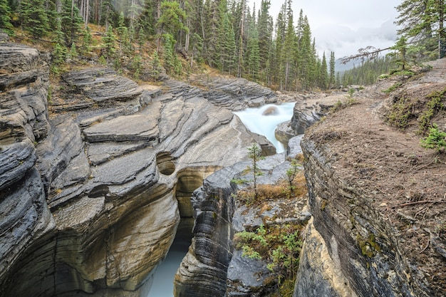 Markanter kurviger mistaya canyon mistaya river banff nationalpark albertakanada