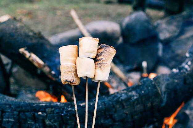 Marshmallow am stiel über dem feuer kochen marshmallows in brand